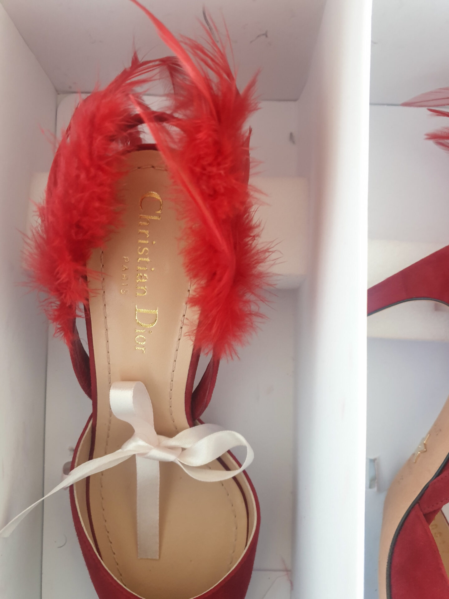 Dior_Ethnie feathers red high heels